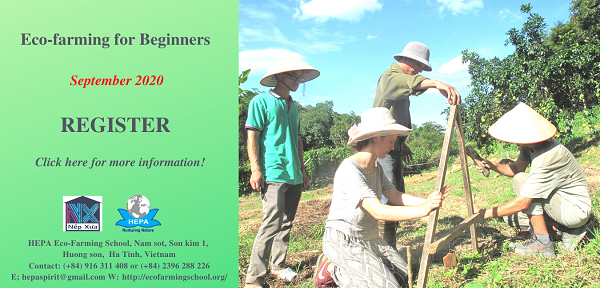 Eco-farming course for beginners